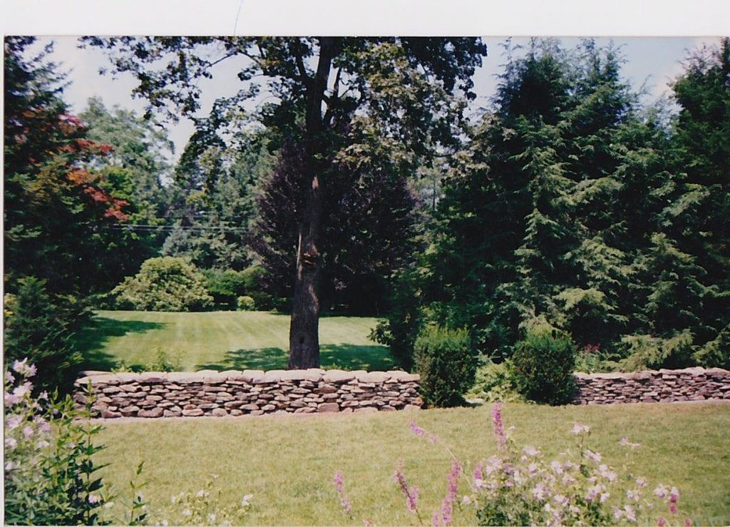 Amherst Landscape 16